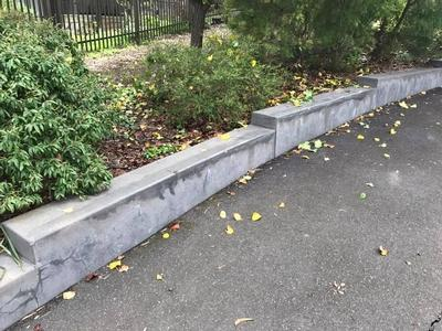 Baden Morgan Ledges