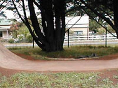 Mortlake Mini Ramp